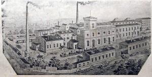 desen-1912-web